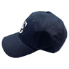 Newark Eagles Low Profile Hat