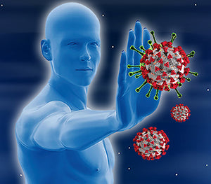 Lithia Spring Water Immune Booster properties depicted with an image of a blue super hero  blocking a virus