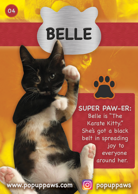 Belle Trading Card