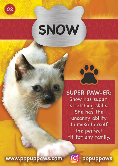Snow Trading Card