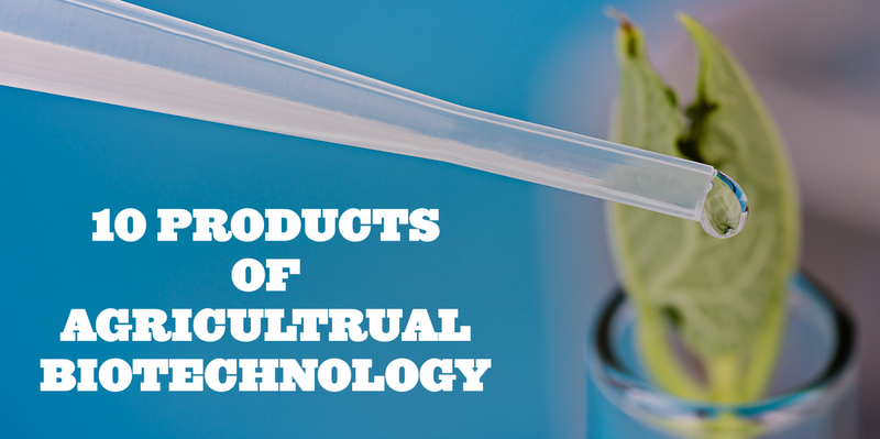 10 PRODUCTS OF AGRICULTURAL BIOTECHNOLOGY