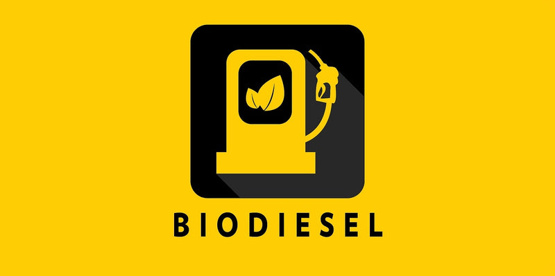 WHAT IS BIODIESEL AND WHY DOES IT MATTER?