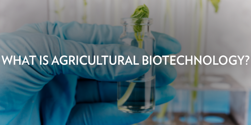 WHAT IS AGRICULTURAL BIOTECHNOLOGY?