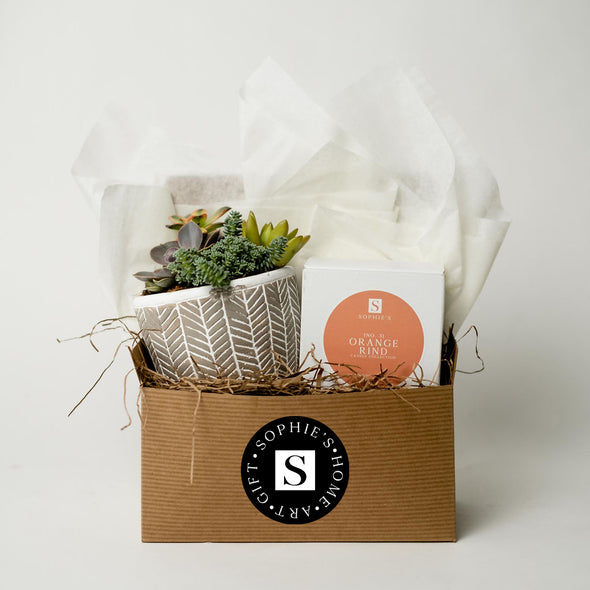 Grey Patterned Succulent + Orange Rind Candle Gift Box