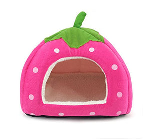 Foldable strawberry bed for dog/cat