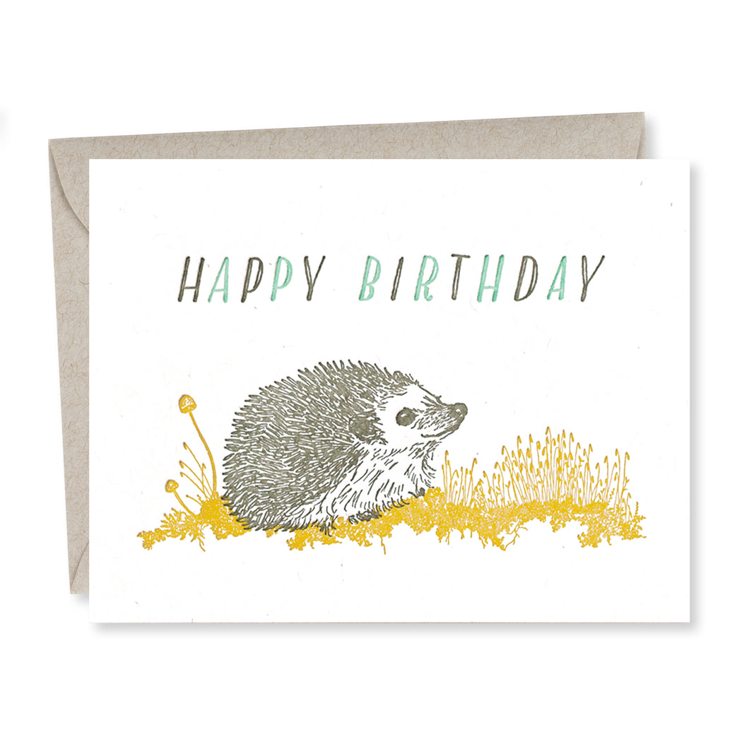 Frida Clements: Birthday Hedgehog 2