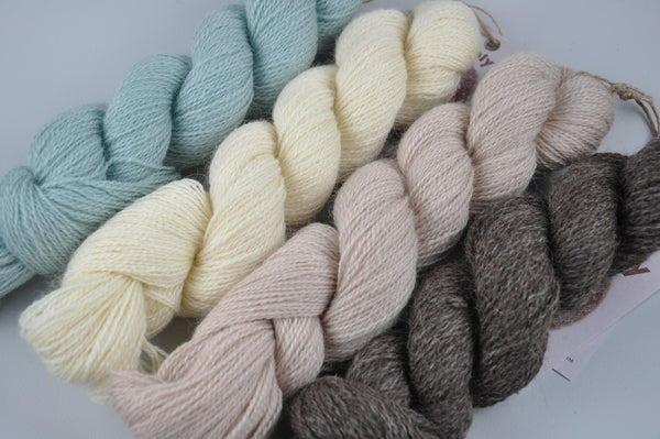Incredibly Rare - Black Wensleydale: Naturally Coloured year 1 (4ply/Sports Weight)