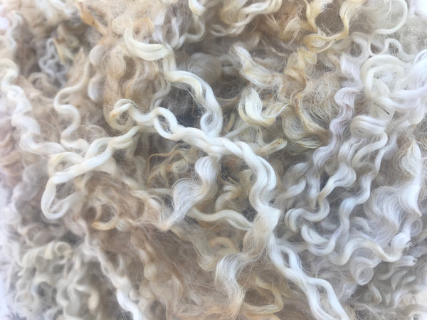 Cyclamin - Wensleydale - Hand Dyed locks/fleece