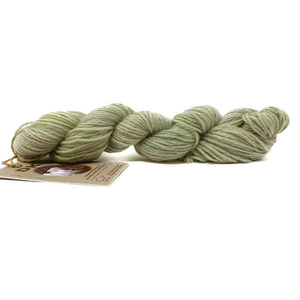 Cardigan Bay collection - Fresh Sage DK (8 Ply/Light Worsted) 50g (1.76 oz): Rare Breed Wensleydale and Bluefaced Leicester