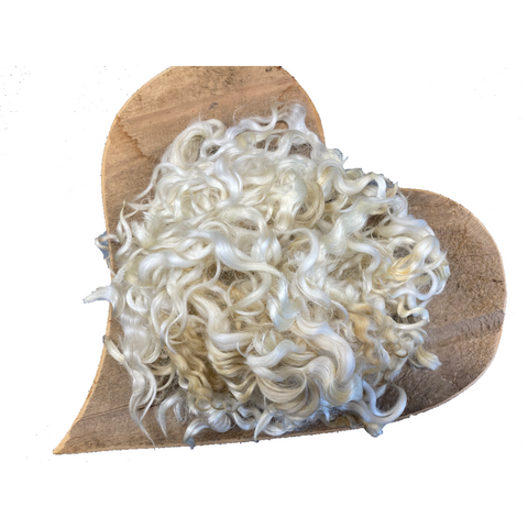 White Lincoln Longwool Lambs Fleece (locks) (Raw Wool)