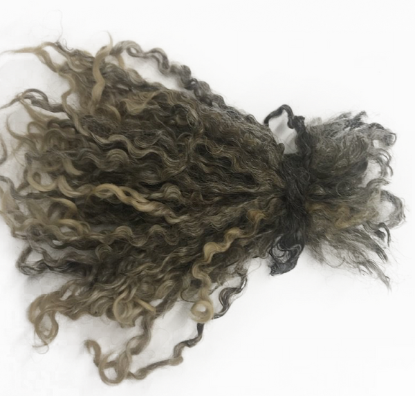 25g (0.9 oz) Pulled Silver Wensleydale Fleece (locks) (Raw Wool)