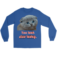 Meme.Shopping You Look Nice Longsleeve Gildan Long Sleeve Tee / Royal / 5XL T-shirt