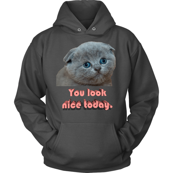 You Look Nice Hoodie - Meme.Shopping