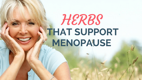 7 Herbs That Support Menopause (Hot Flashes, Sleep Issues ...
