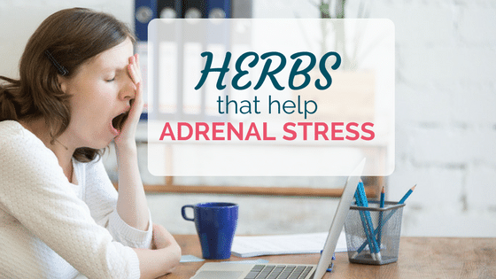 9 Herbs That Help Adrenal Stress (Exhaustion, Always Wired