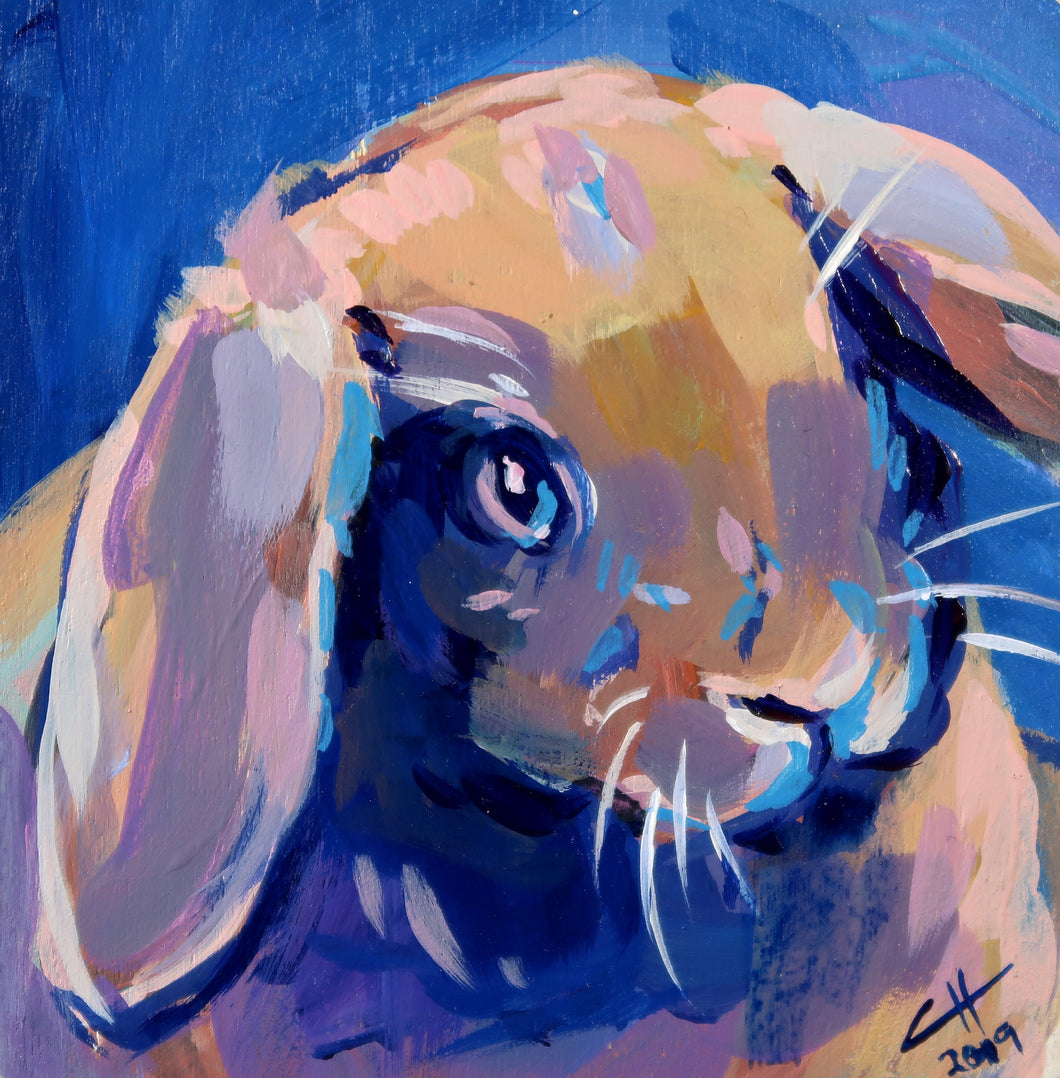 Rabbit #2 Easter 2019