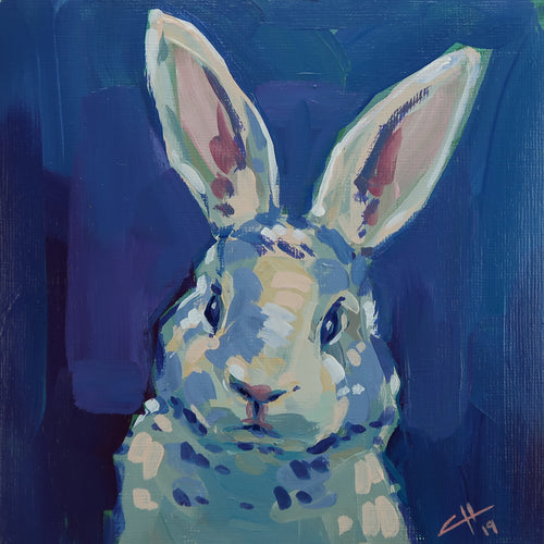 May Rabbit No. 8