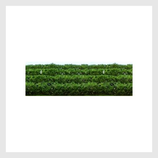 JTT Scenery Products HO 95515 Green Hedges (8)