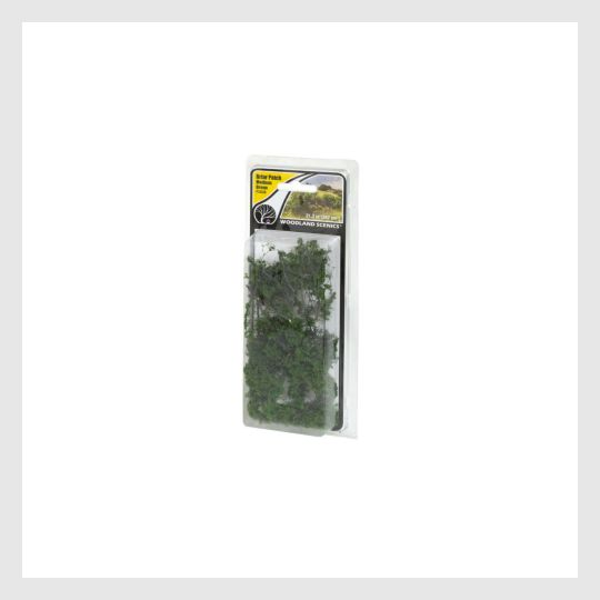 "1494046998551 - Woodland Scenics Tr3533 Waters Edge Trees, 2"" To 3"" (4) - Rj's Trains"