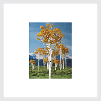 "1494037331991 - Grand Central Gems T16 Fall Aspen Trees, 2-3"" (15) - Rj's Trains"