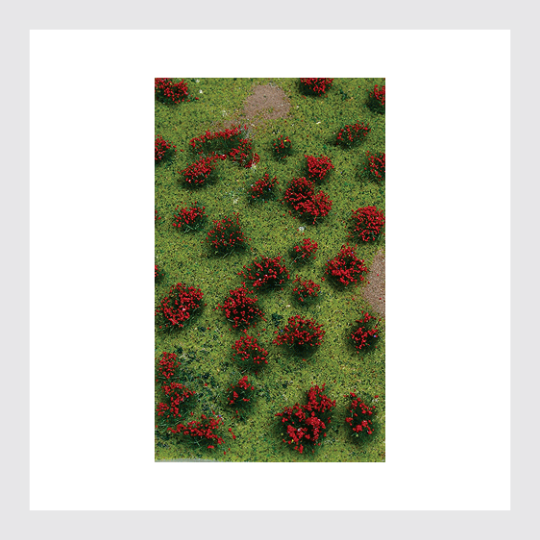 1482728538135 - Scenery Products Ho 95604 Landscape Detailing Flowering Meadow Red - 5