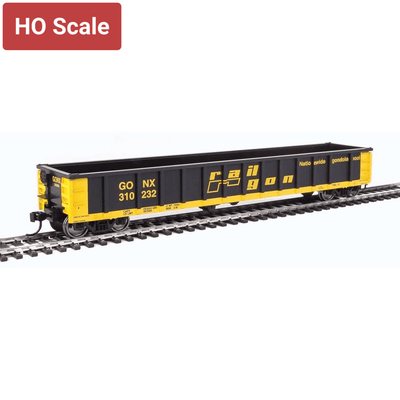 Walthers, HO Scale, 910-6224, 53' Railgon Gondola, Railgon, #310232