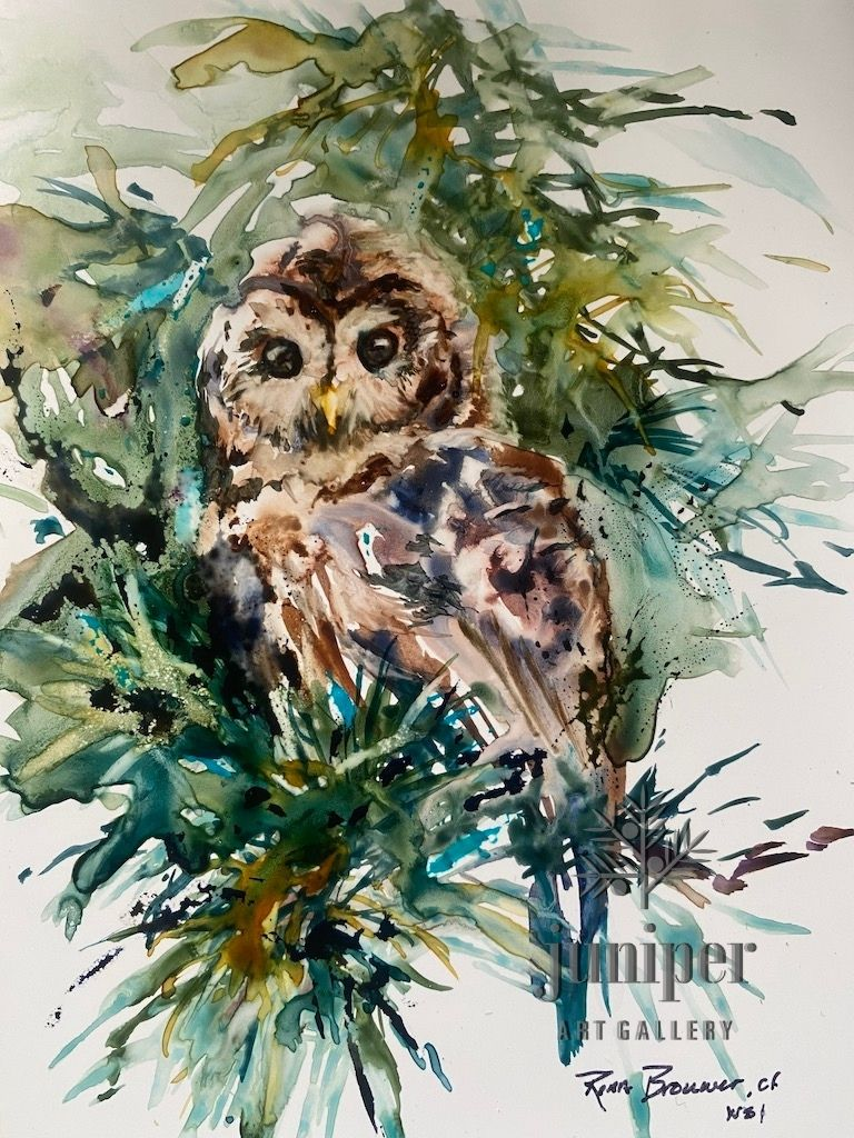 Barred Owl, watercolor by Rena Brouwer