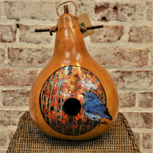 Gourd birdhouse, wood-burned, hand painted by  Debra Flagle