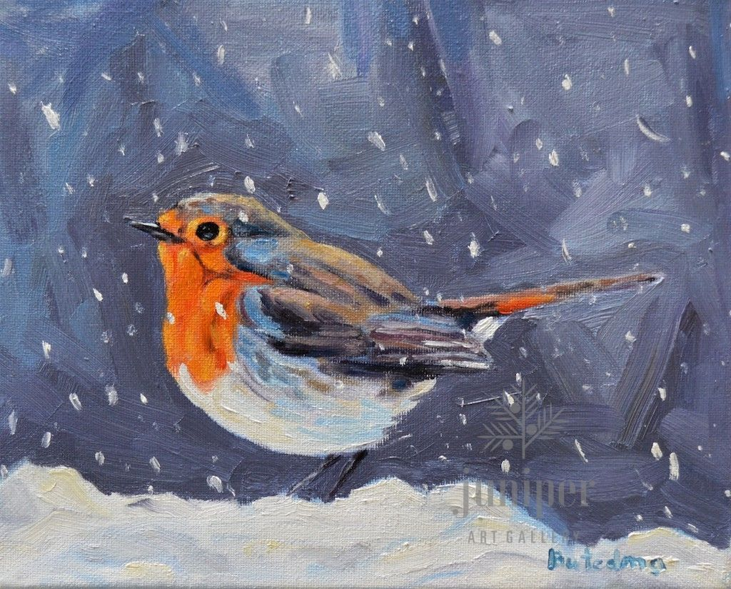 European Robin by Grace (Butedma) Gonso