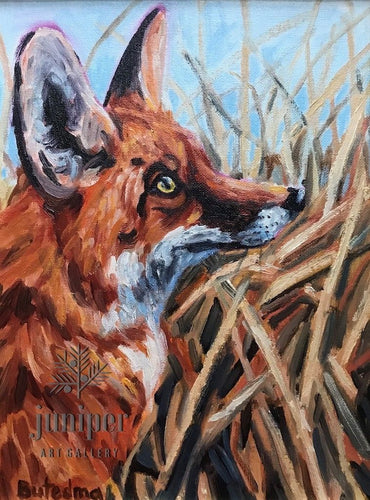 Fox Thoughts, oil painting on canvas by Grace (Butedma) Gonso