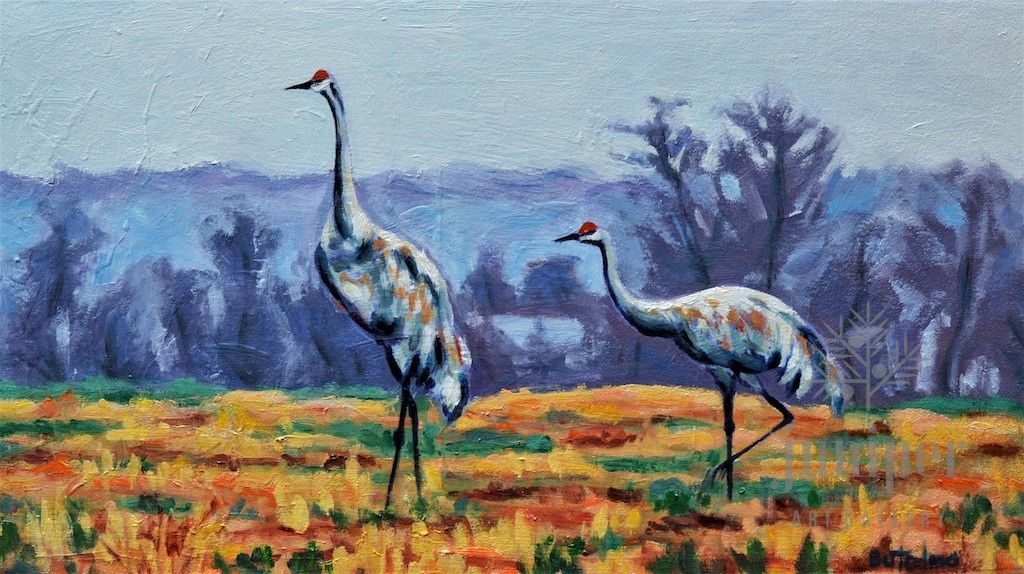 Sandhill Cranes by Grace (Butedma) Gonso