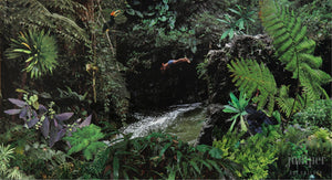 Rainforest Paradise, reproduction from origanal collage by Margaret L. Sweany