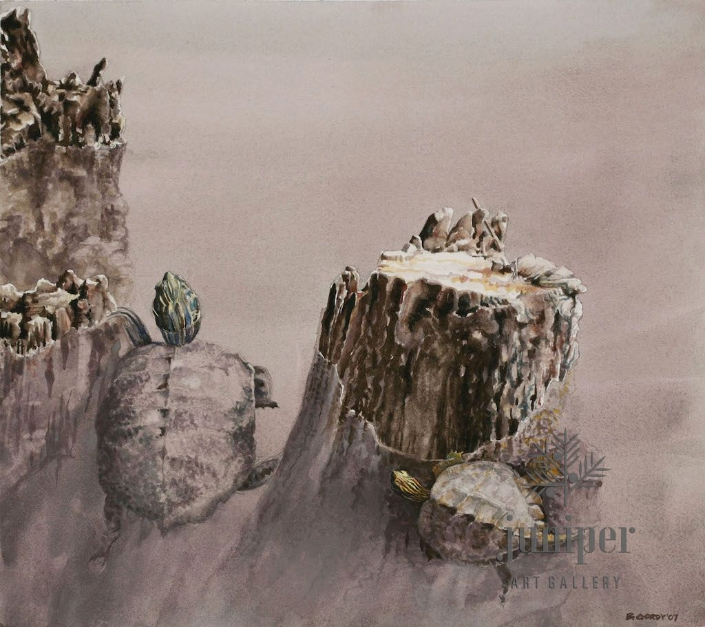 (Framed Reproduction) Map Turtle Ballet , by Brian Gordy
