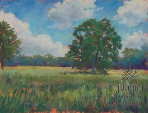 Field of Summer by Pamela C. Newell