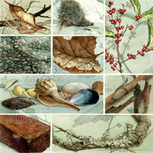 Compositions in Texture (reproduction from original watercolor by Paul J Sweany)