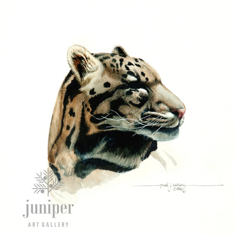 Jaguar Study (reproduction from original watercolor by Paul J Sweany)