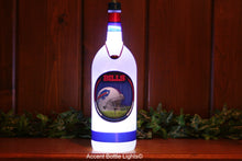Buffalo Bills Football Bottle Light