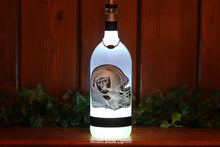 Oakland Raiders Football Team Bottle Light