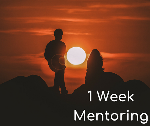 1 Week Private Mentoring - Study of Intuition/Divination
