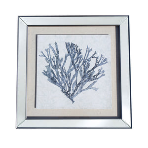 Framed Coral Blue 3