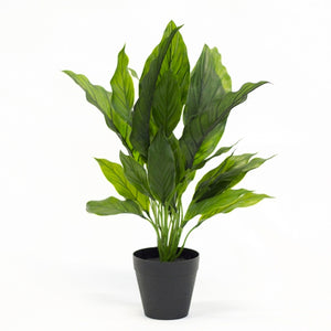 Potted Artificial Spathiphllum