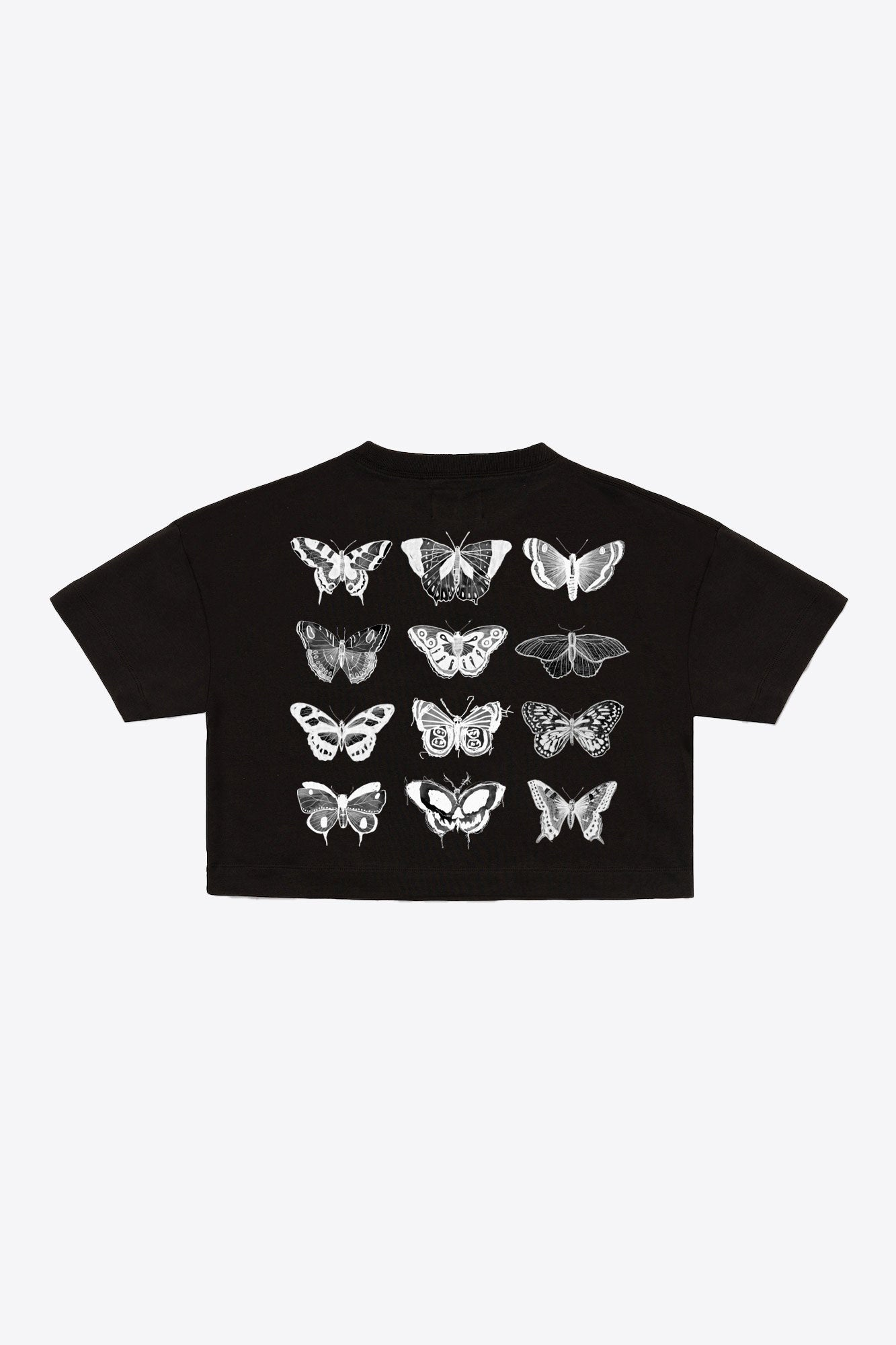 Black 12 Butterflies Crop
