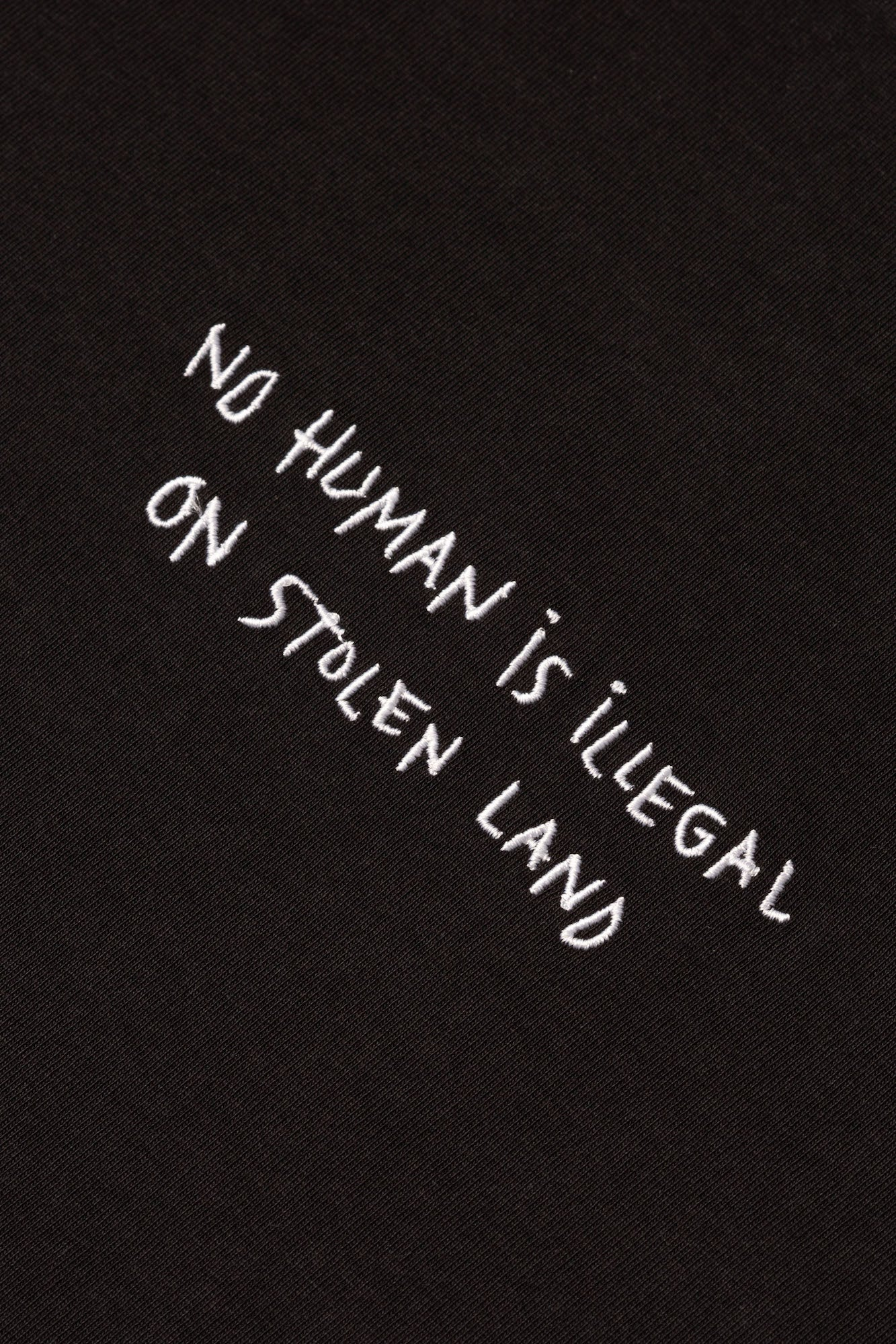 No Human Is Illegal Crop