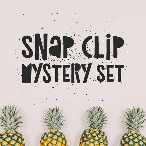 Snap Clips - Set of 4 - Summer Soiree Mystery Set