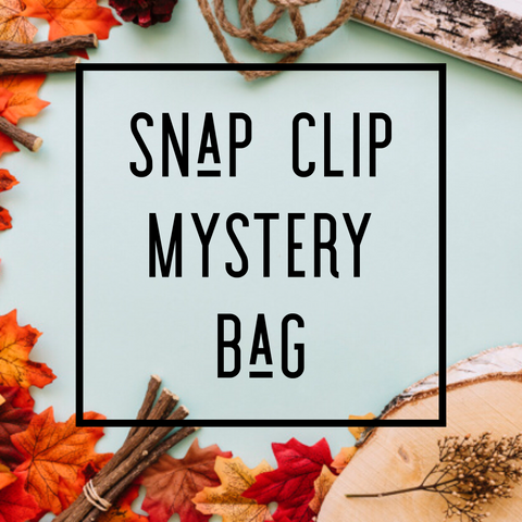 Snap Clips - Set of 4 - FALL18 Mystery Set