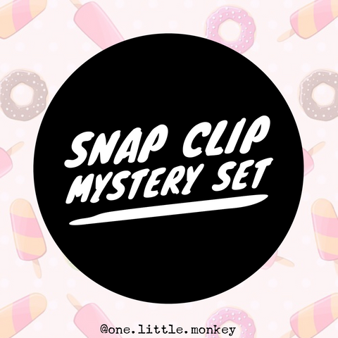 Snap Clips - Set of 4 - Mystery Set