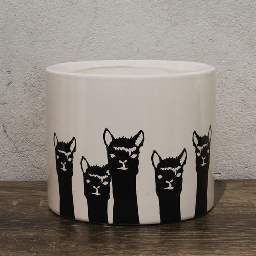 Alpaca Llama Herd Pot handmade by Ella Jane Strathalbyn South Australia a unique gift for plant lovers