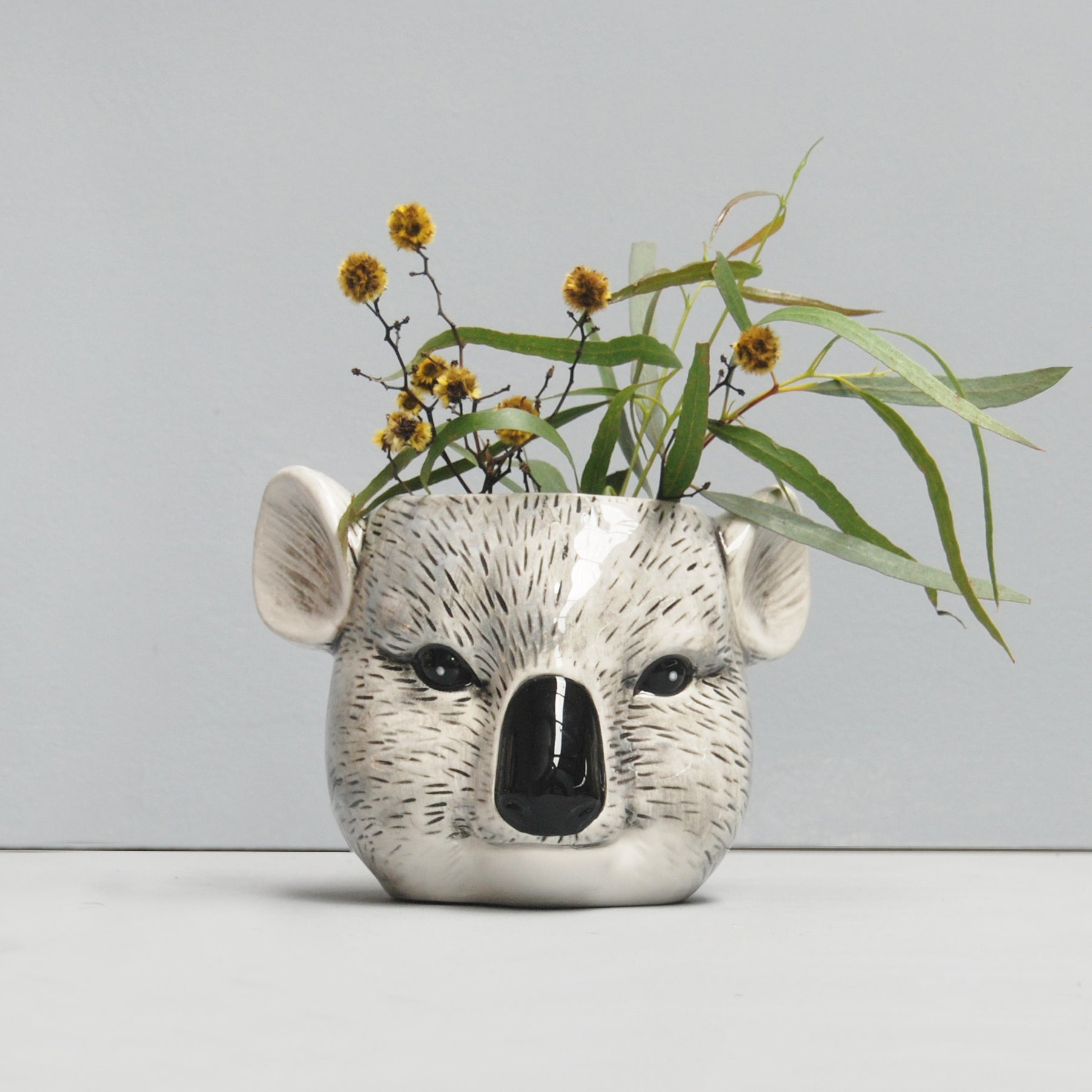 ceramic koala head planter native australian flora and fauna white moose australian designer homewares and gifts home decor pot plant