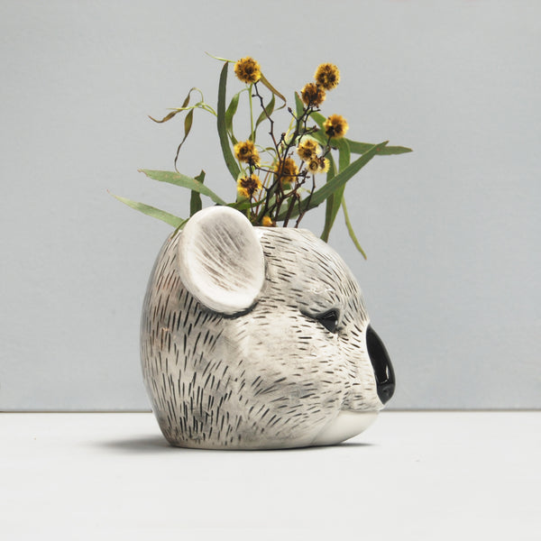 sideview of australian koala ceramic pot plant planter with native flora arrangement yellow wattle unique homewares and gifts white moose