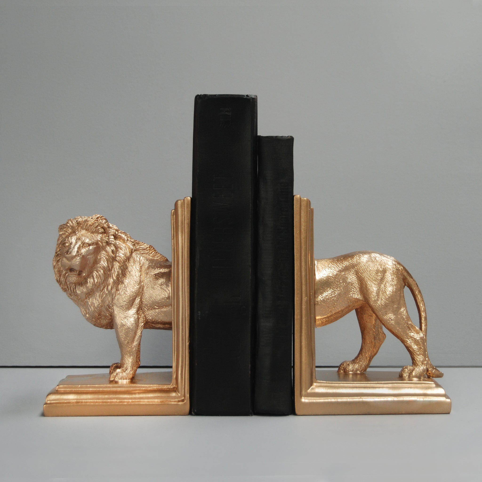 gold lion resin bookends with black books australian designer white moose book lovers lion lovers gift idea unique birthday housewarming